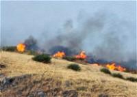 اندلاع حريق بغابة سويسرا قرب طبريا